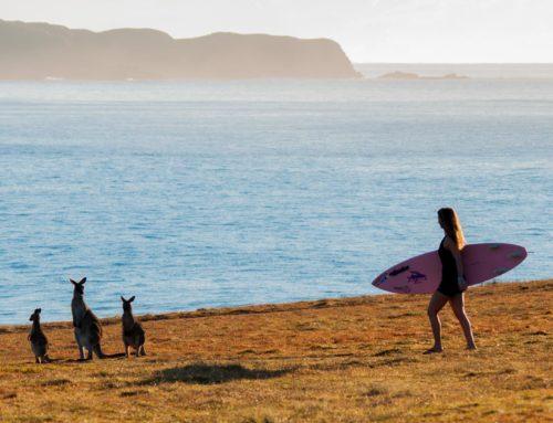 Alison's Adventures in Manly, Australia
