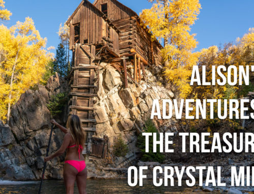 Alison's Adventures: The Treasure of Crystal Mill